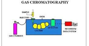 Free chromatography Essays and Papers